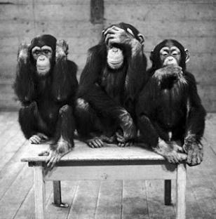 three-wise-monkeys-c11765657